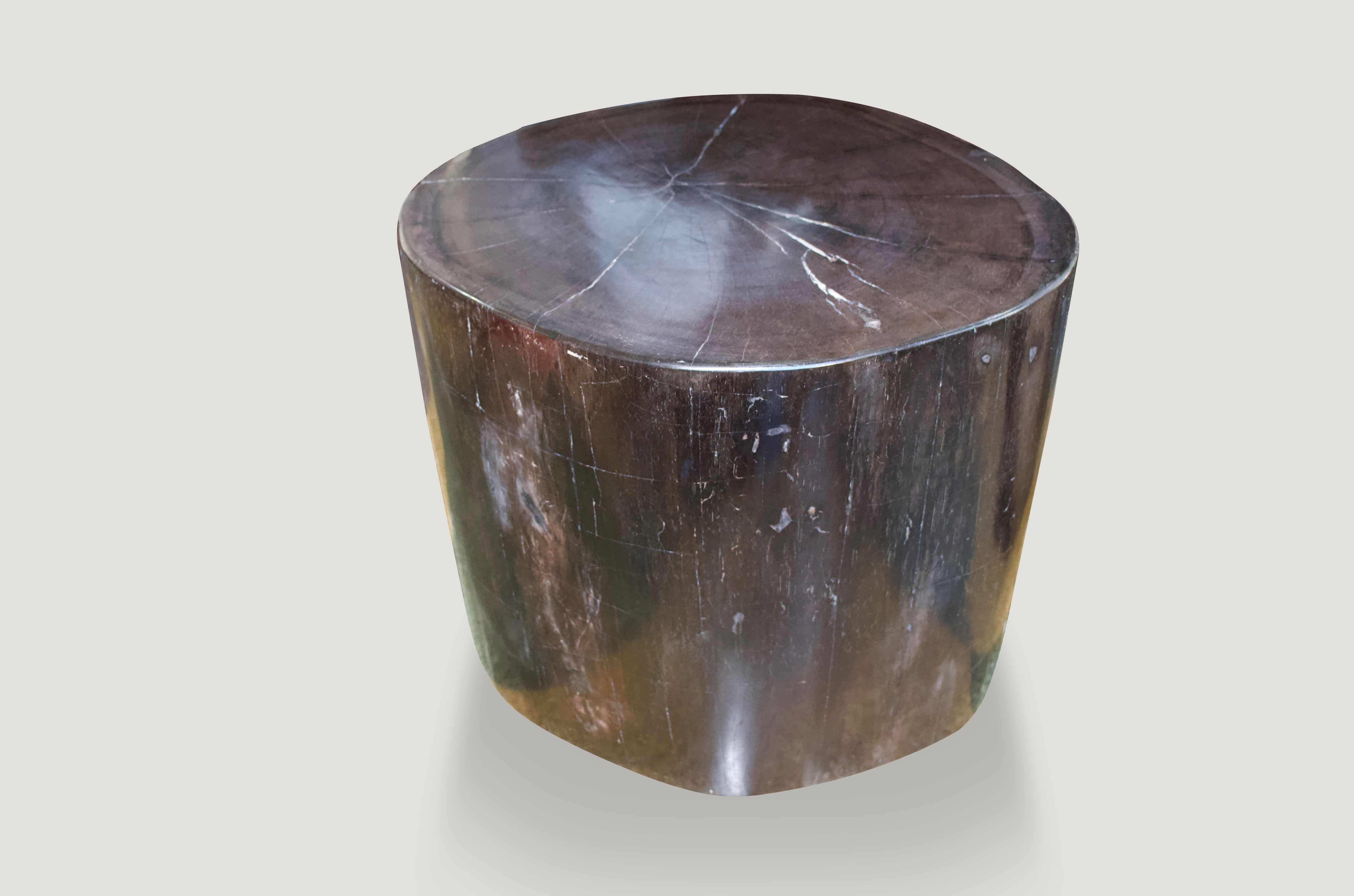 Super Smooth High Quality Petrified Wood Side Table 163KG - Andrianna  Shamaris
