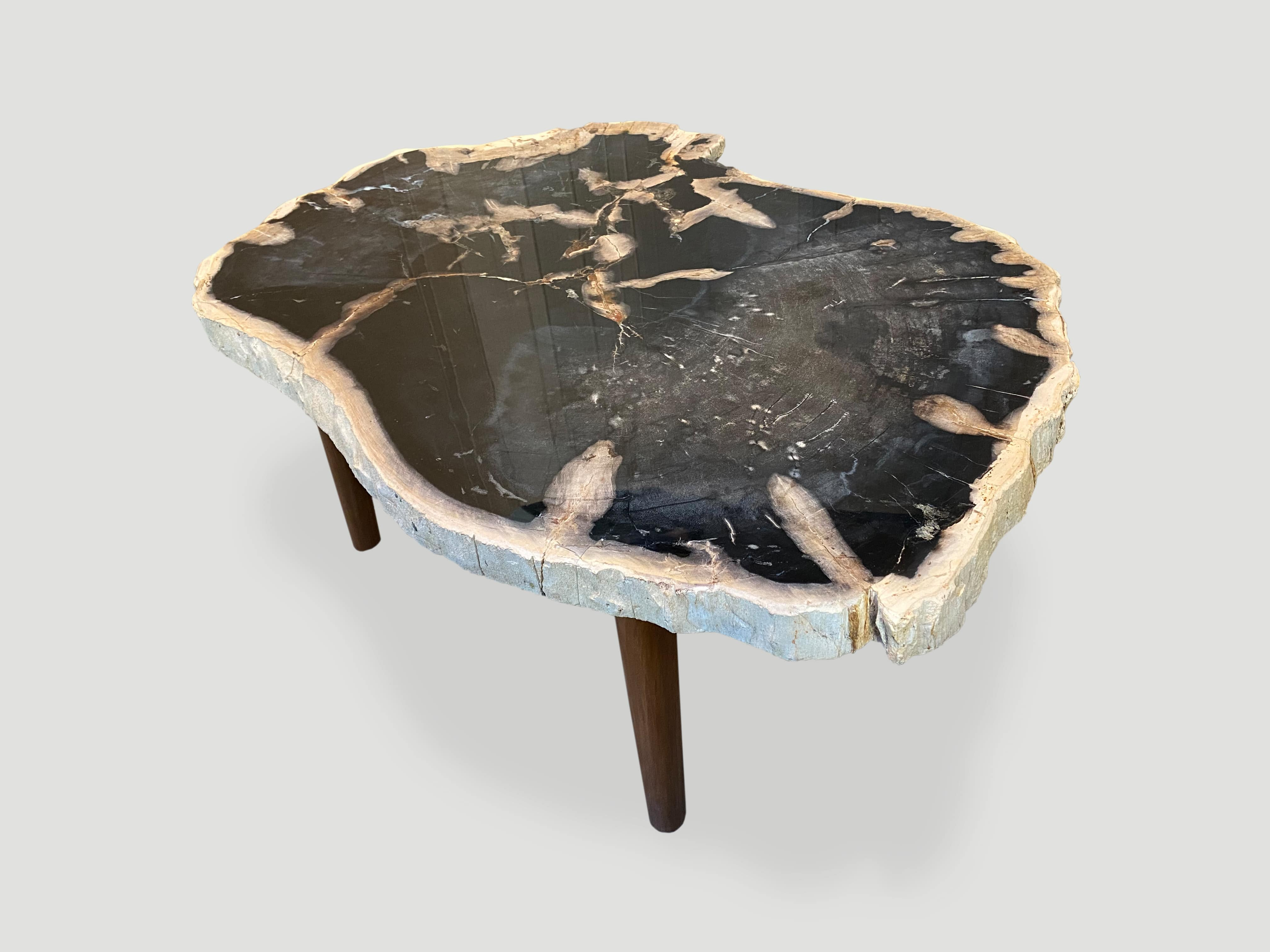 petrified wood slab coffee table resting on a natural teak base